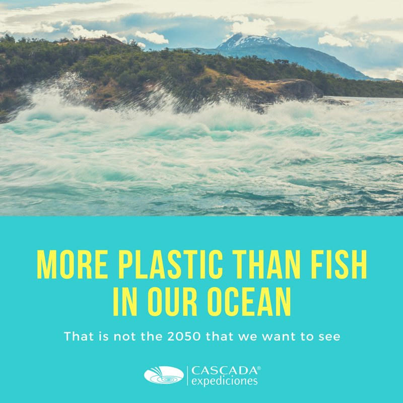 ¨¨¨¨More plasticthan fish in our oceans¨ (2)