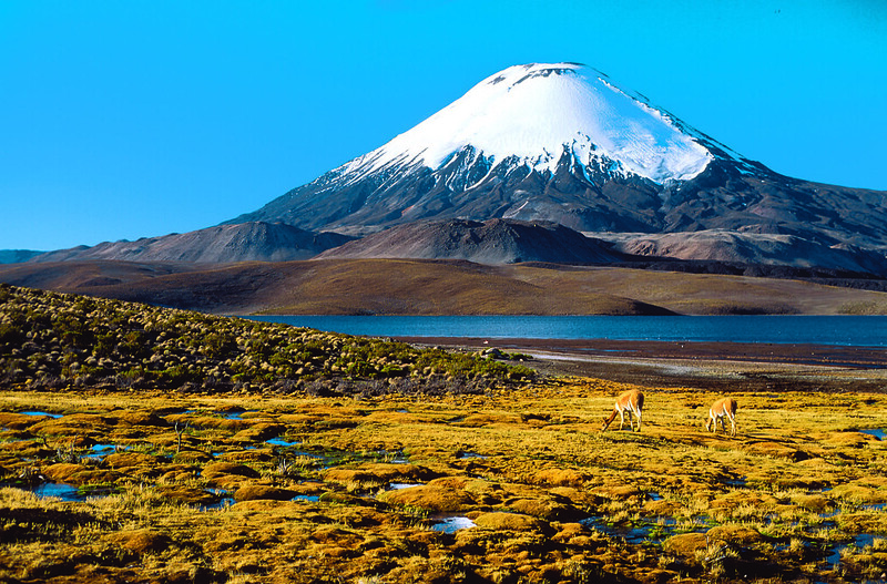 Arica Region and Volcano in Chile