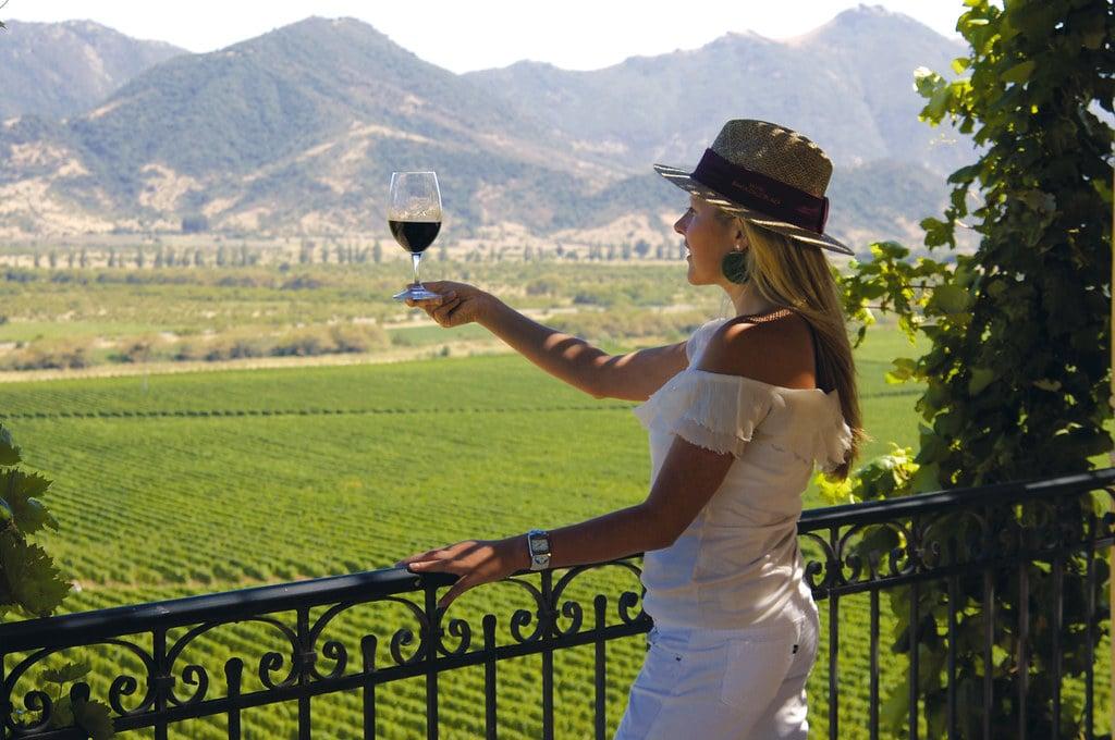 Wine Valeys Chile