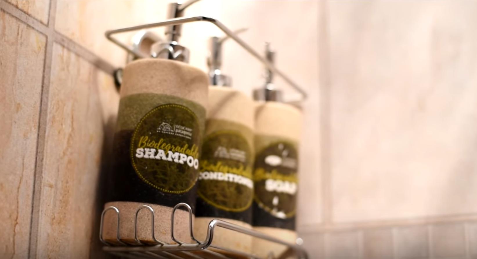 Biodegradable Shampoo