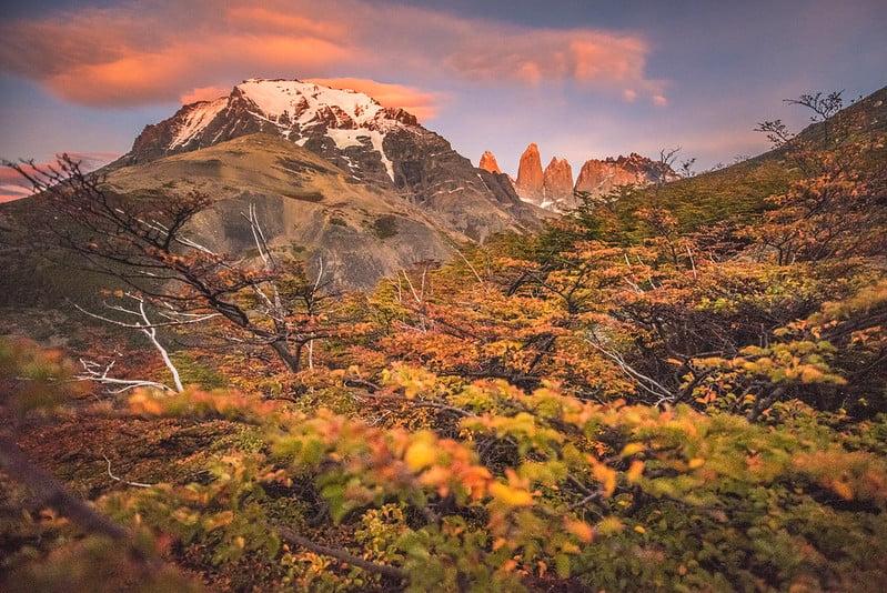 autumn torres del paine