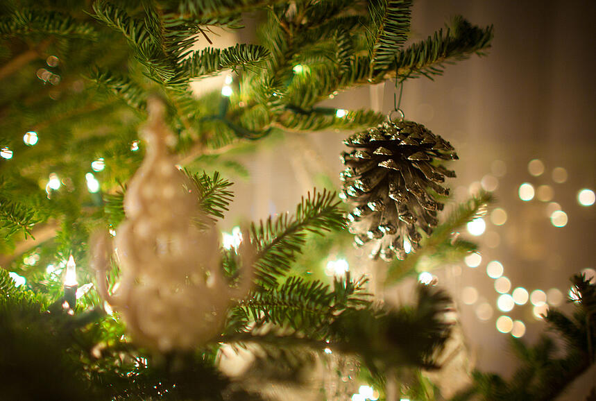 realchristmastree-2