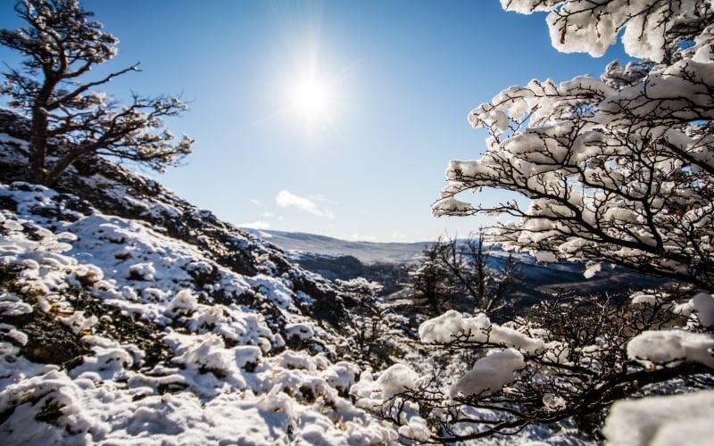 winter in tdp