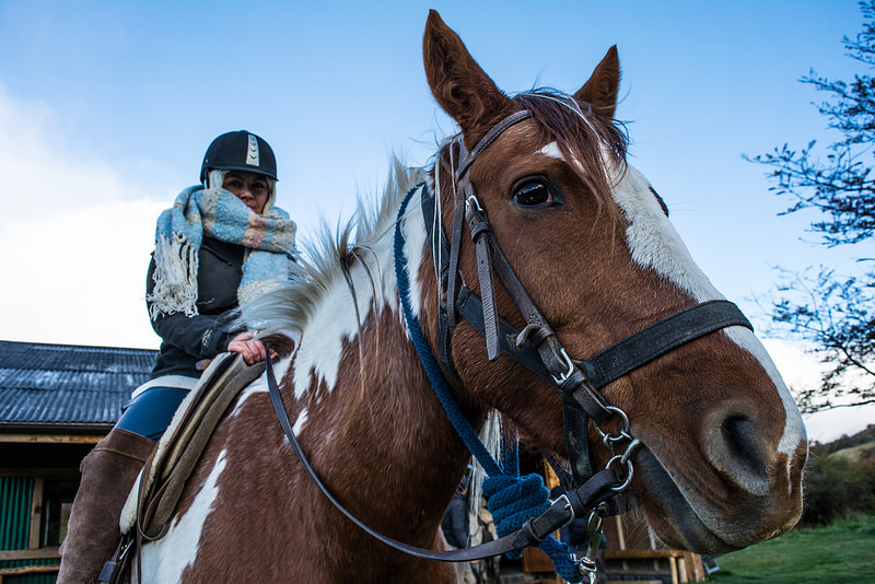 Horseback riding in Puerto Natales