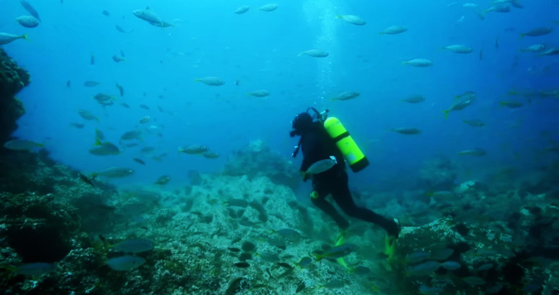 Scuba Diving in Chile