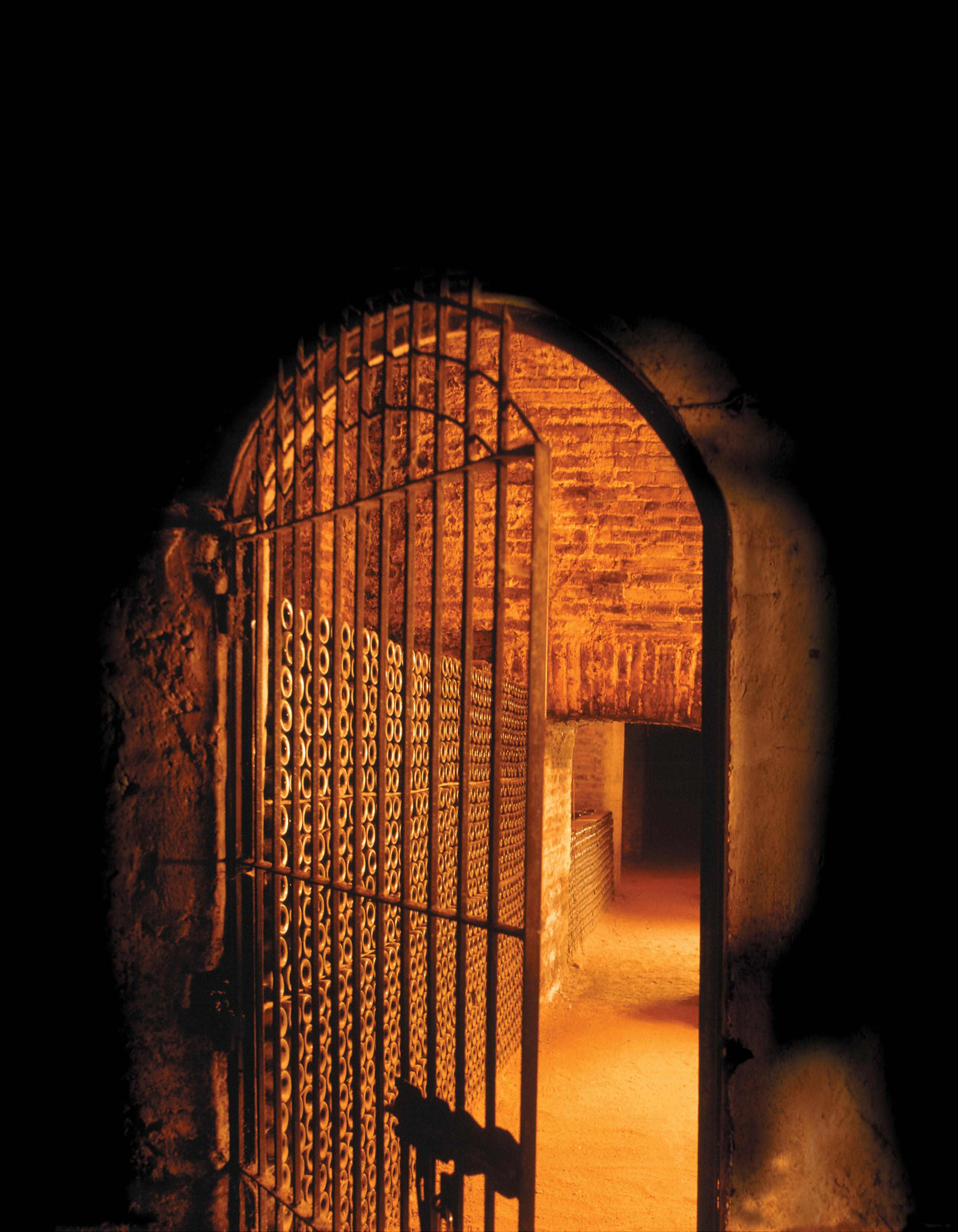 casillero del diablo wine cellar