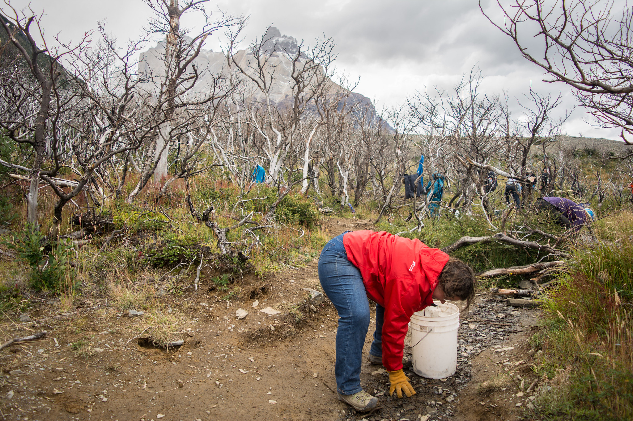 Clean up Party in Torres del Paine